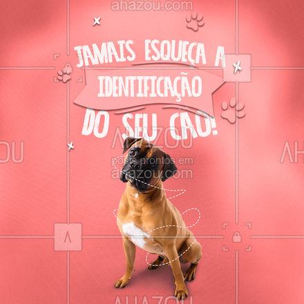Placas de identificação permitem a um estranho bem intencionado entrar em contato com você para devolver seu cão. Certifique-se de tê-la bem presa à coleira com seu nome completo e telefone. #AhazouPet  #dogwalkersofinstagram  #dogsitter #dogsofinstagram #petsitting #dogtraining #dogwalk #doglover  #dogwalker #petsitter #dogdaycare #dogwalkerlife