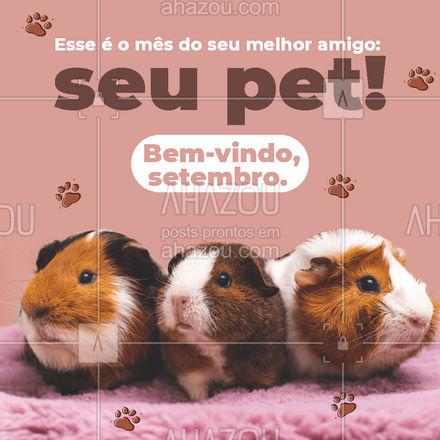 Nossa missão é cuidar muito bem do seu amigo. Traz ele aqui!🤗❤ #setembro #pet #bemvindosetembro #AhazouPet #petlovers #ilovepets