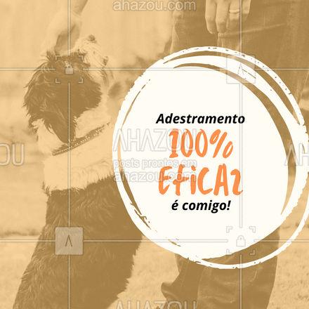 Aqui o serviço é garantido! Entre em contato e saiba mais! #AhazouPet #adestramento #adestrador  #dogtraining  #doglover   #dogsofinstagram