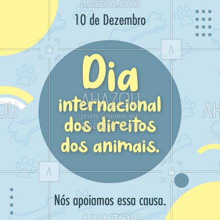 Apoie essa causa você também, no dia 10 de dezembro é comemorado o dia internacional do direito dos animais. Buscando a conscientização no respeito e na preservação de todas as espécies.  #10dedezembro #petlovers #AhazouPet #Direitosdosanimais #motivacional #pet