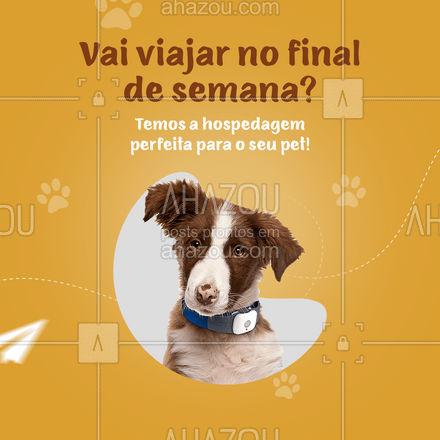 Temos serviços de hospedagem para os seus bichinhos enquando você está fora! ?  #AhazouPet  #dogs #cats #ilovepets #petoftheday