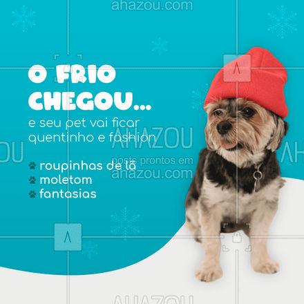 Eles ficam ainda mais fofos com roupinha né?! ? #AhazouPet #roupinha #frio #roupaprapet #pet #Cao #Cachorro #roupapracachorro #fashion #moda #moleton #fantasia #inverno