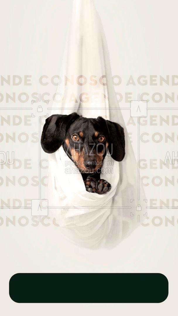 Precisa marcar aquela consulta ou exame pro seu pet? Entre em contato!  #AhazouPet  #medicinaveterinaria #medvet #vetpet #veterinarian #veterinario