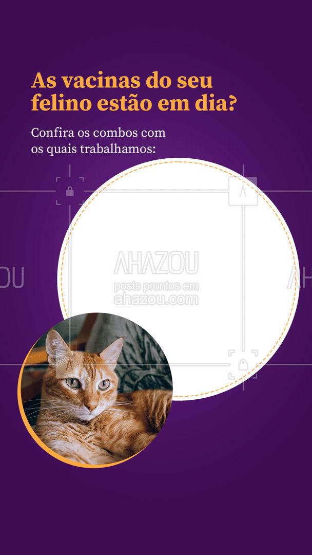 Agora que você já sabe quais combos temos, agende a vacinação do seu gatinho! ?  #vacinacaopet #gatos #felinos #AhazouPet  #medvet #vetpet #medicinaveterinaria