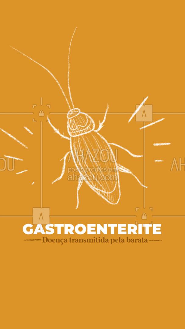 A gastroenterite é uma doença transmitida pela barata causando diarreia e vômitos. É possível evitar está doença com uma boa higiene, evitando comida à mostra e dedetização regular. #AhazouServiços #dedetizador #dedetizacao #barata #dicas #AhazouServiços