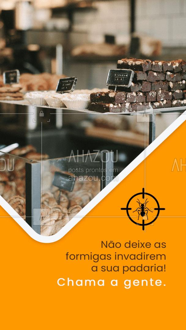Está tendo problemas com formigas na sua padaria e não sabe mais o que fazer? marque agora mesmo seu horário  ? #AhazouServiços #formiga #padaria #dedetização #dedetizador #pragas