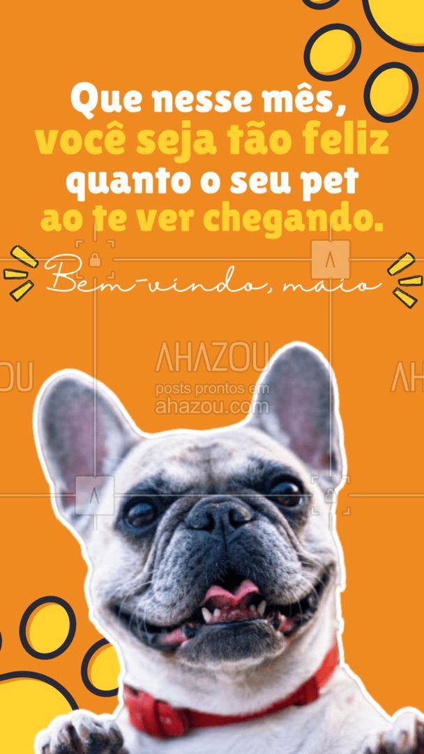 Que seja um mês repleto de alegria!? #frasemotivacional #maio#AhazouPet #bemvindo #pets