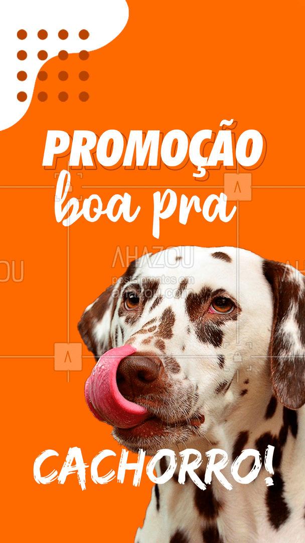 Quer uma promoção boa para cachorro? Chegou no lugar certo! Hoje é um dia especial para o seu cachorro, e pra você também! #DiaDoCachorro #AhazouPet #Promoção