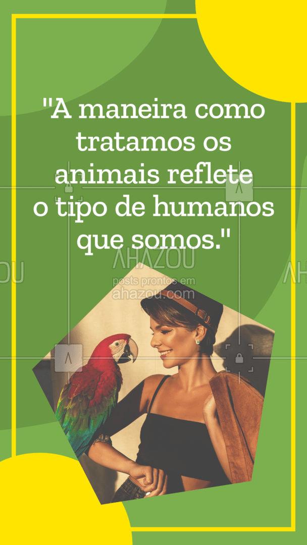 Você conhece bem sobre uma pessoa, pela maneira como ela trata os animais! #frase #motivacional #AhazouPet  #petoftheday #petlovers #petsofinstagram