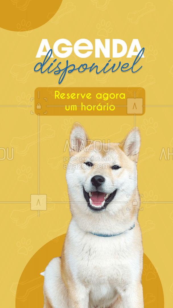 Hora de cuidar do seu melhor amigo! ? Agende agora ? (inserir telefone) #agendaaberta #agenda #cats #dogs #ahazoupet #petsofinstagram #petlovers #ilovepets