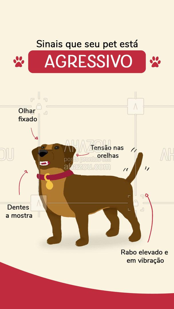 A linguagem corporal pode dizer muito sobre o estado de espirito do seu pet, saiba como decifra-las ? #pet #cachorro #AhazouPet #dogwalker #guia #dicas #agressivo