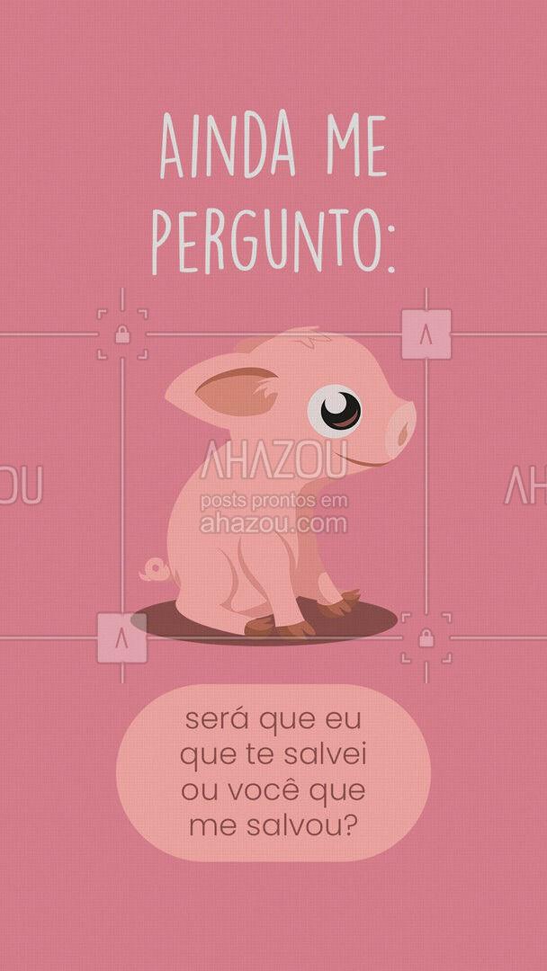 O amor mais puro que existe é esse! ? #AhazouPet #ilovepets #petoftheday #petlovers #petsofinstagram #salvação #porco #porcodeestimação #amor #pet