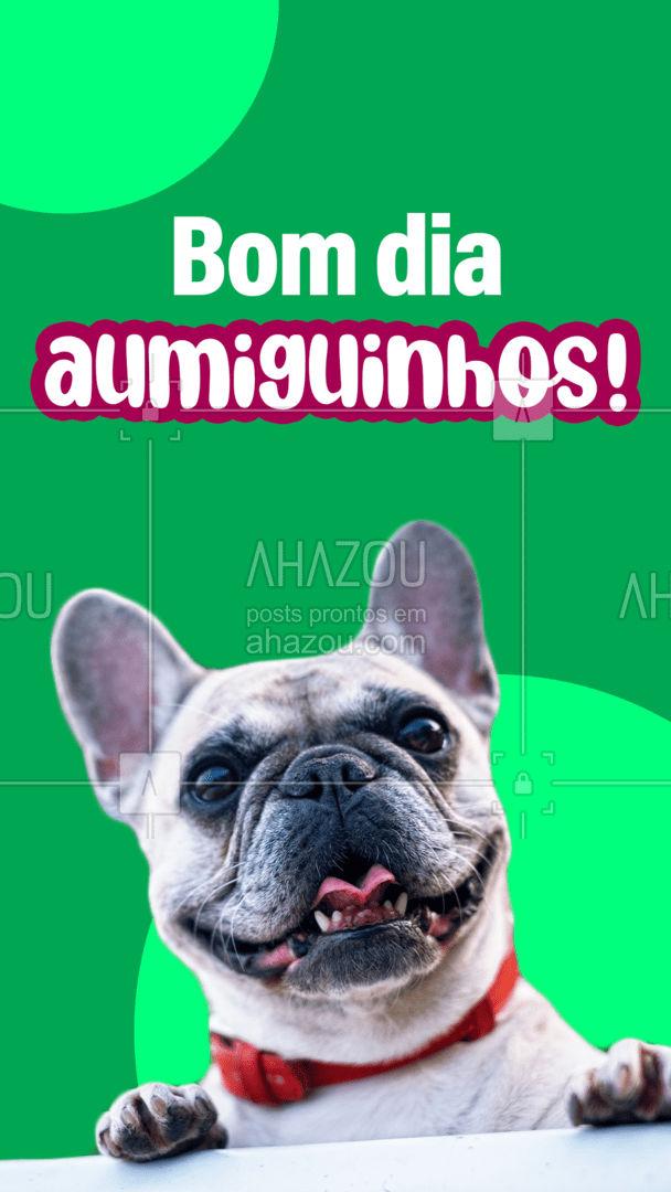 Bom dia a todos, que seu dia seja alegre e iluminado! Comece o dia sendo positivo, afinal você atrai o que você transmite! #AhazouPet  #bomdia  #petlovers #petoftheday #petsofinstagram #dogsofinstagram
