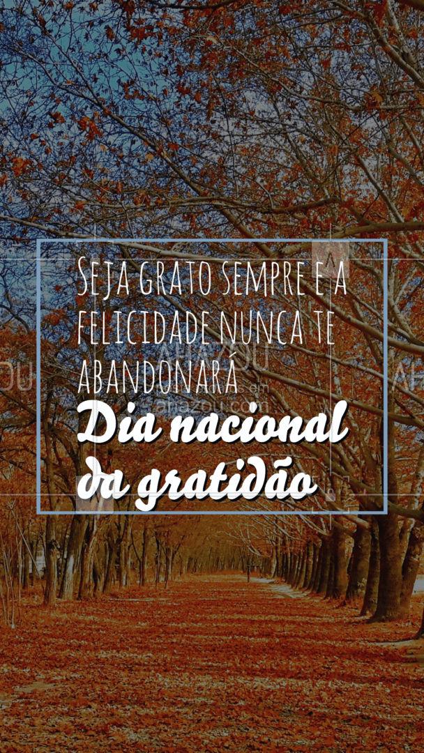 Seja grato as pequenas coisas,seja grato no muito e no pouco também. Apenas seja grato!  #ahazou  #frasesmotivacionais #motivacionais  #motivacional #quote