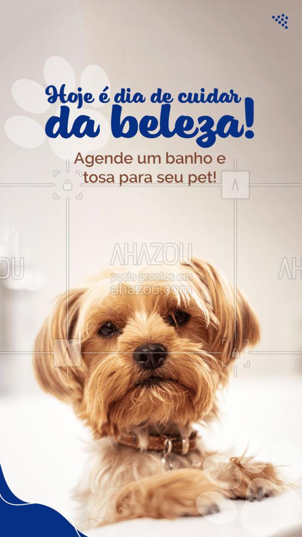 Traga seu pet para ficar lindão e cheirozão! Entre em contato 📞 (inserir número) e agende já o seu horário! #banhoetosa #petshop #AhazouPet #banho #tosa #cachorro #gato #petlovers #tosahigiênica