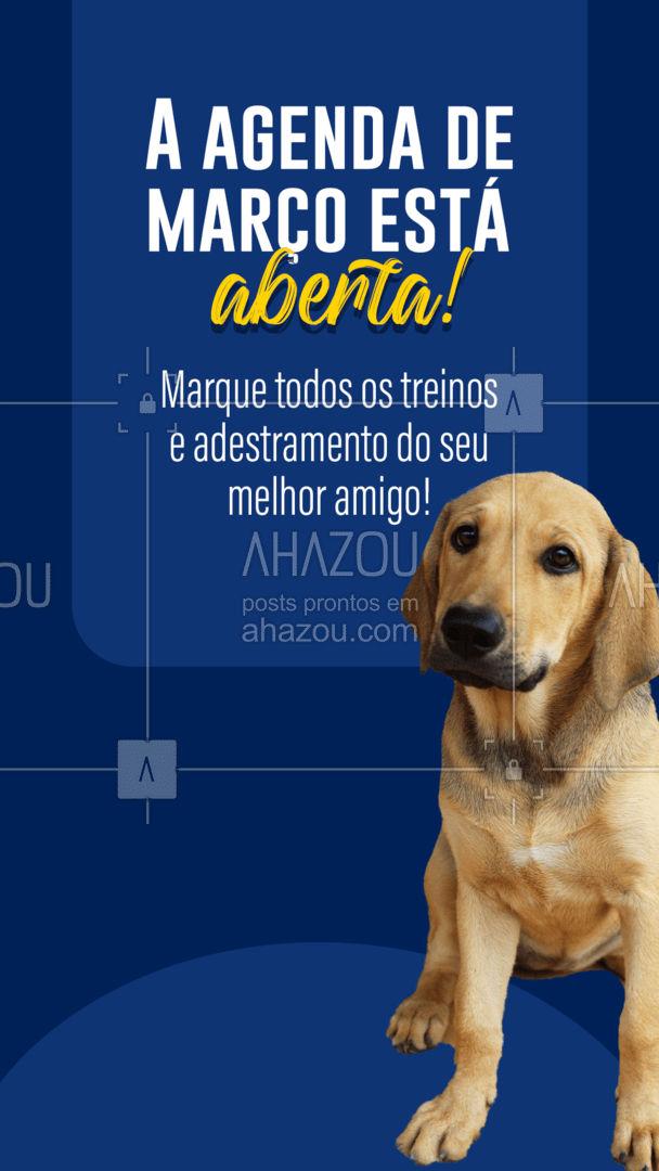 Aproveite nossos pacotes! Temos visitas [x] vezes por semana, semanais e até quinzenais para garantir a educação e o bem-estar do seu pet.  ?? #AhazouPet  #dogtraining
