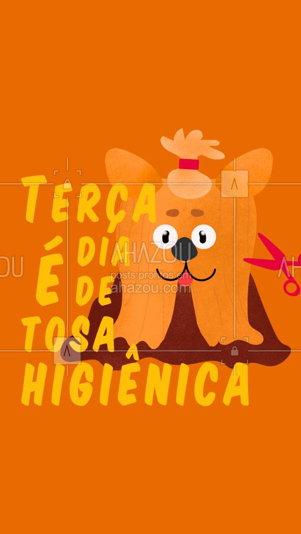 Quem ama cuida! Já agendou o seu pet pra terça??? #AhazouPet #instapet #banhoetosa #terca #promocao #cuidados #tosahigiênica