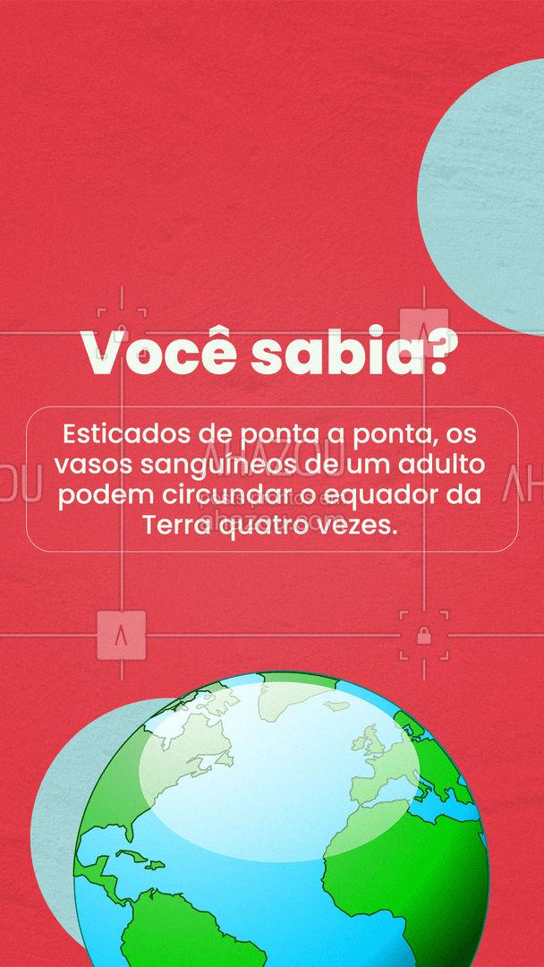 Simplesmente incrível! 🌎 #curiosidades #ahazou #terra #vasossangíneos
