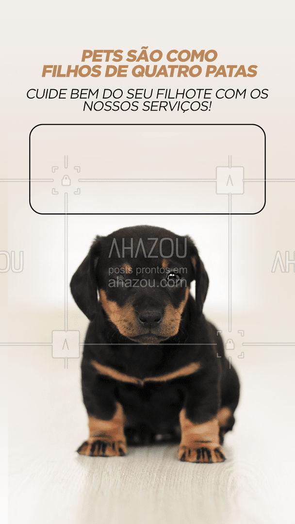 Mime o seu pet com os nossos melhores serviços! ?? #petwalker #dogwalker #AhazouPet  #dogsitter #doglover #dogdaycare