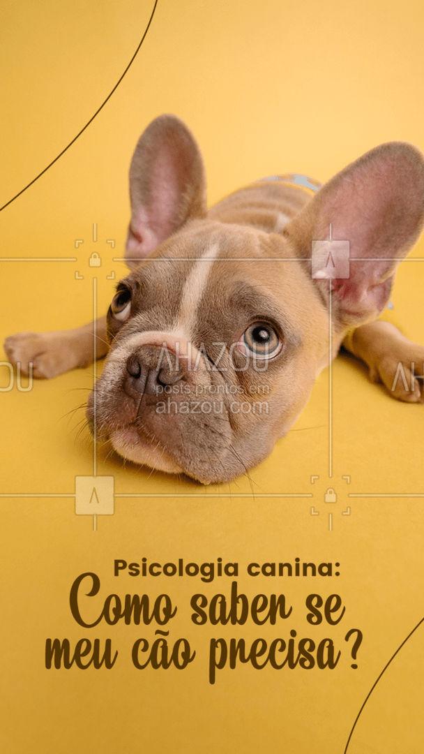 Esse tratamento é indicado apenas para cães que apresentam problemas significativos de mau comportamento, confira alguns desses problemas: *Latidos em excesso; *Mau comportamento ao passear; *Agressividade repentina; *Hostilidade com visitas e outros pets, *Apatia sem motivo aparente. E aí, seu pet apresenta alguns desses problemas? Talvez seja a hora de procurar ajuda! ??  #AhazouPet #petsitter #dogwalkersofinstagram #petsitting #dogtraining #dogdaycare #dogwalkerlife #psicologiacanina