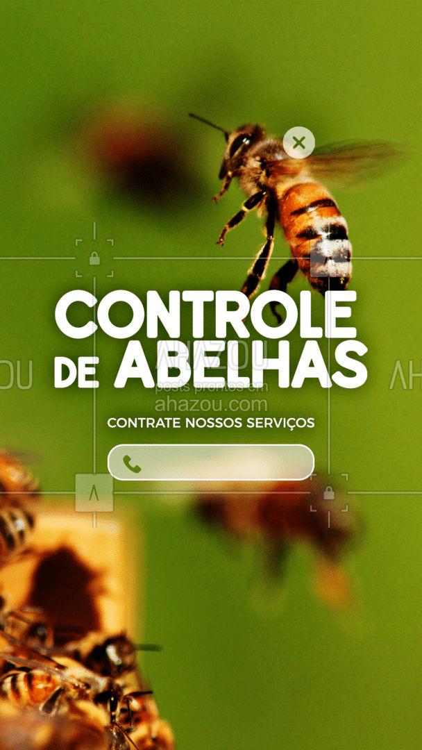 As abelhas estão incomodando por aí? Solicite uma dedetização! Entre em contato: (xx) xxxx-xxxx #AhazouServiços #abelhas #ddt #dedetização #controledeabelhas #controle #problema #serviços