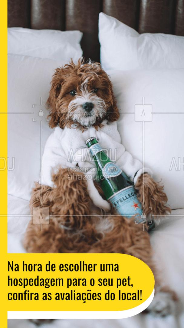 Através dos comentários e depoimentos de outros clientes, você se assegura de deixar o seu pet em um bom lugar, te deixando mais tranquilo também! #hotelpet #petsitter #AhazouPet #petsitting #dogdaycare #doglover