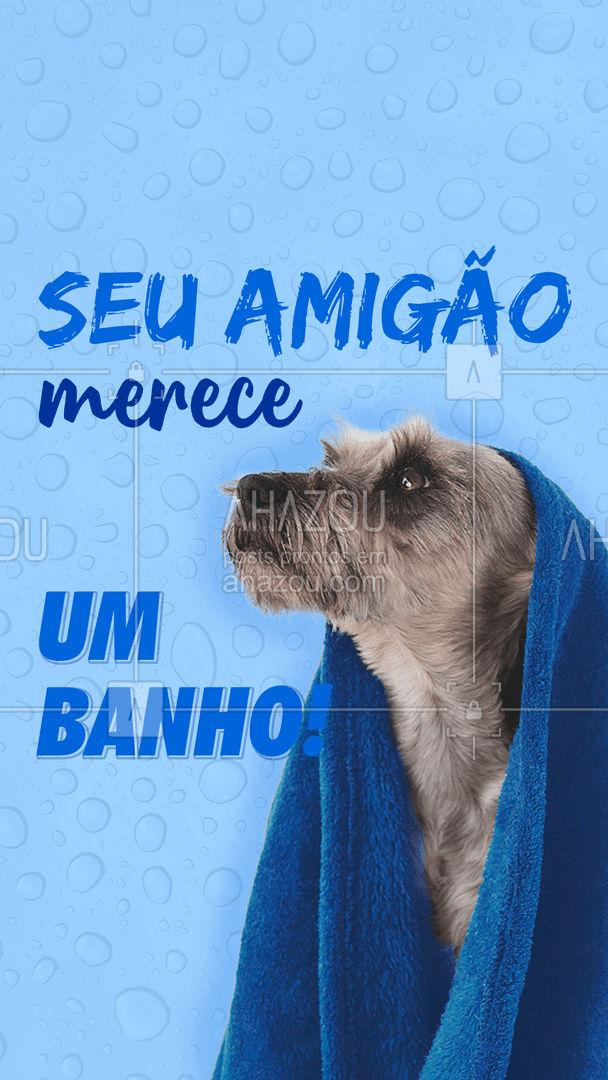 No dia do cachorro, quem merece o presente é ele! Aproveite a promoção para dar um banho caprichado no seu amigão! #DiadoCachorro #AhazouPet #Banho