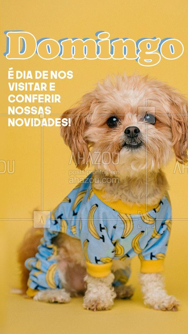 Venha conferir o que preparamos para o seu PET! #AhazouPet #petshop #novidades #pets #serviços #promoção #domingo #AhazouPet