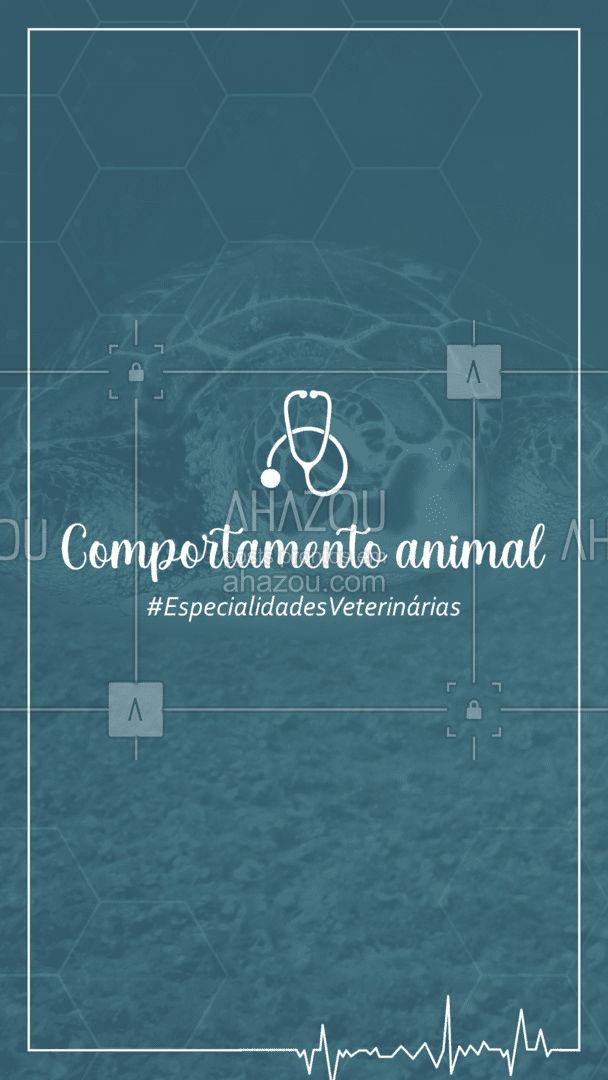Essa especialidade veterinária é a melhor opção quando o assunto é ansiedade, agressividade, medos e depressão. Conte sempre com a ajuda de um especialista! Seu pet merece o melhor! #AhazouPet #medicinaveterinaria #medvet #vetpet #veterinarian #veterinary #clinicaveterinaria #petvet #veterinario #vet #veterinaria #AhazouPet #AhazouPet