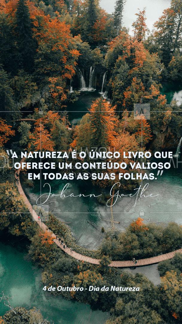 Preservar a natureza é nossa obrigação diária! ? #ahazou  #motivacionais #DiadaNatureza #Natureza #Nature