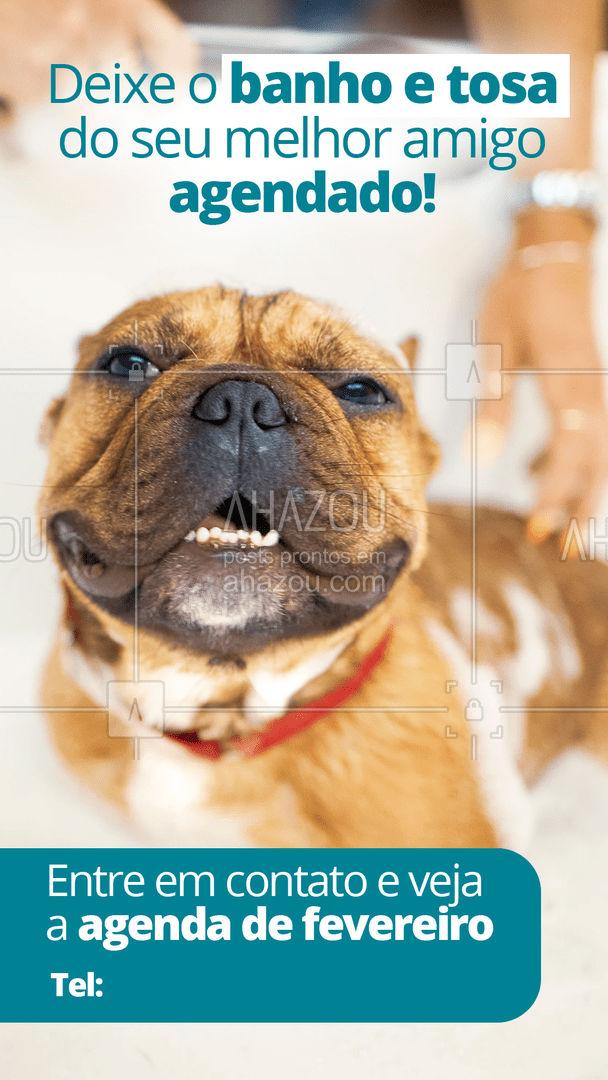 Não deixe para última hora! Garanta o bem-estar e a higiene do seu pet. ? #AhazouPet  #banhoetosa #tosahigiênica #petshop