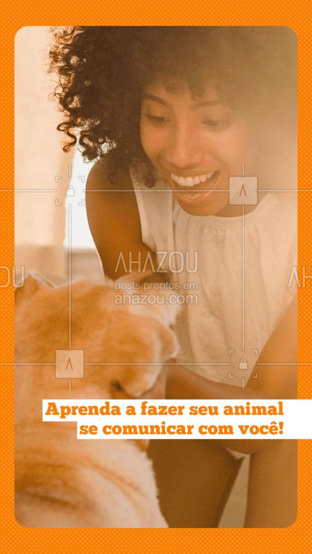 O seu PET não consegue decifrar o que você está pedindo. O adestramento ajudará na comunicação entre vocês. Além disto, os cães têm uma linguagem corporal, falam muito com a cauda e com as orelhas, é importante tentar interpretar isso para melhorar ainda mais a comunicação. ?❤️ #AhazouPet #dogwalkersofinstagram #dogsitter #dogsofinstagram #petsitting #dogtraining #dogwalk #doglover #dogwalker #petsitter #dogdaycare #dogwalkerlife #AhazouPet