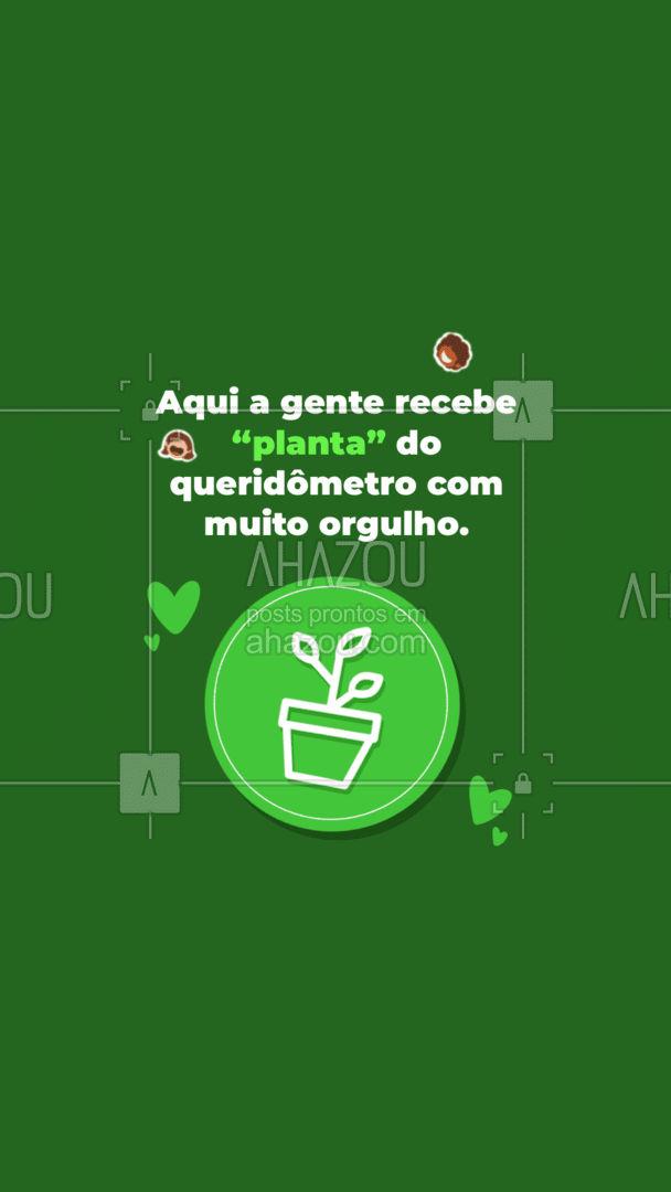 Planta é a melhor coisa que tem. Além de uma delícia faz muito bem pro seu corpo. #ahazoutaste  #veggie #vegetariano #fit #vegan