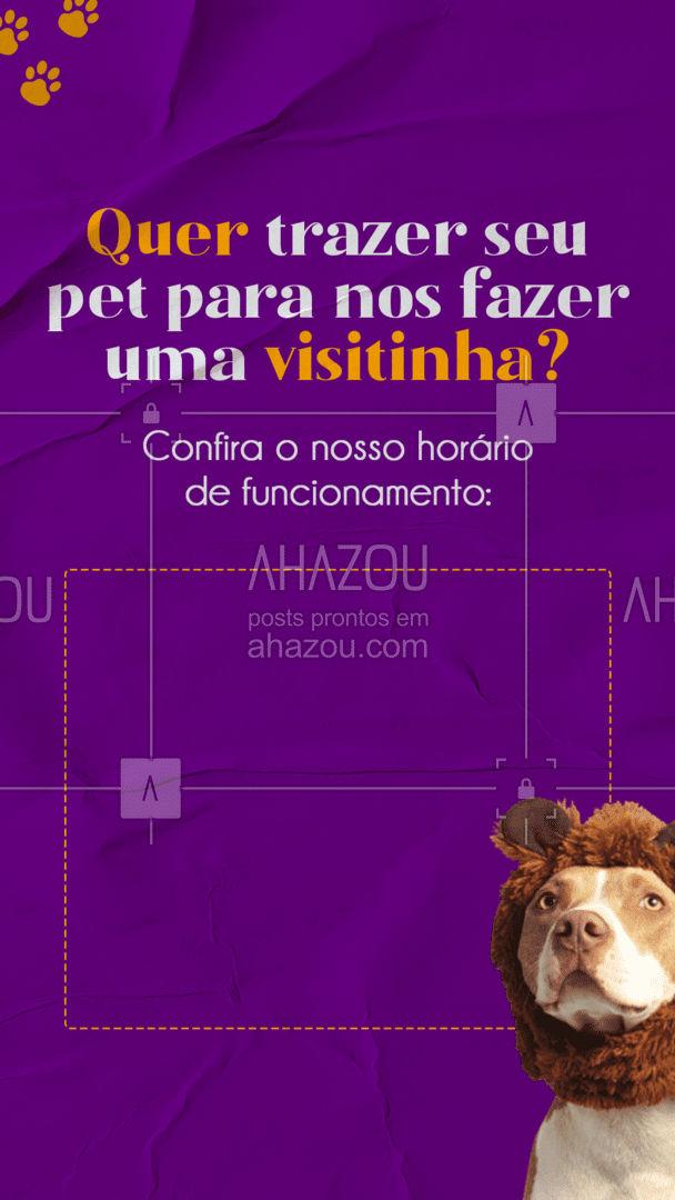 Traga o seu pet para passar um dia aqui com a gente! ? #petsitter #dogsitter #AhazouPet  #doglover #petsitting #dogdaycare