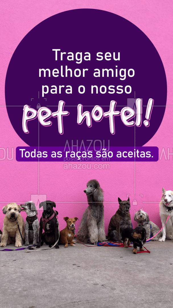Vamos garantir que seu melhor amigo tenha momentos incríveis! ❤️ #AhazouPet  #dogsofinstagram #ilovepets #petlovers #cats #dogs