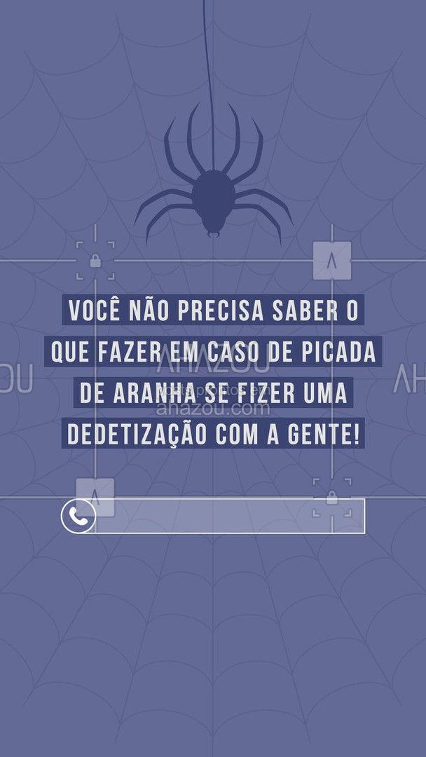 Entre em contato e agende sua dedetização de aranhas! ?(preencher) #AhazouServiços #dedetização #aranhas #dedetizaçãodearanhas #picadadearanha #ddt
