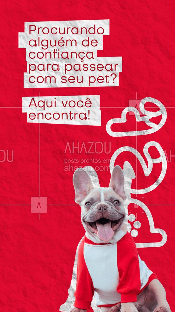 Aqui temos a melhor equipe para levar seu amigo, aos melhores passeios com muita segurança e cuidados! Entre em contato 📞 (inserir número) e agende um horário! #dogsitter #petsitting #dogtraining #dogwalk #doglover #AhazouPet #dogwalker #petsitter #dogdaycare #dogwalkerlife