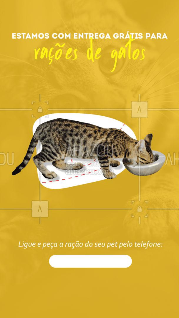 A ração do seu gato acabou? Não se preocupe pois estamos com entrega grátis acima do valor (R$___)! ? Não deixe seu pet com fome, ligue pra gente e garanta a ração do seu amado bichinho. ? #Ração #Petshop #AhazouPet #Entrega #Pet