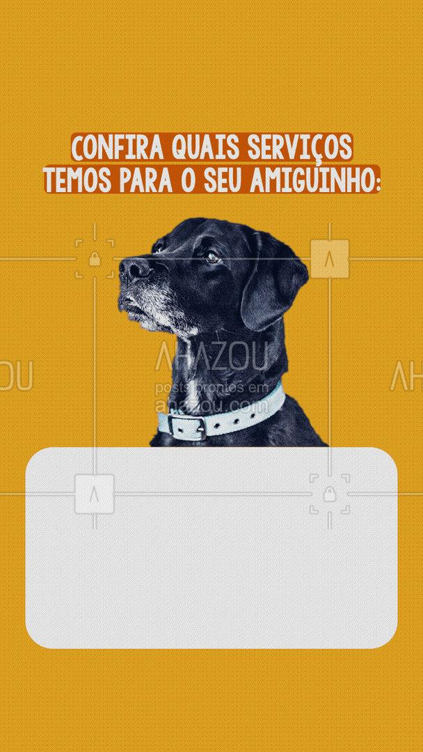 Aqui seu pet é bem cuidado com os nossos melhores serviços! ? #dogwalker #petwalker #AhazouPet #petsitter  #doglover