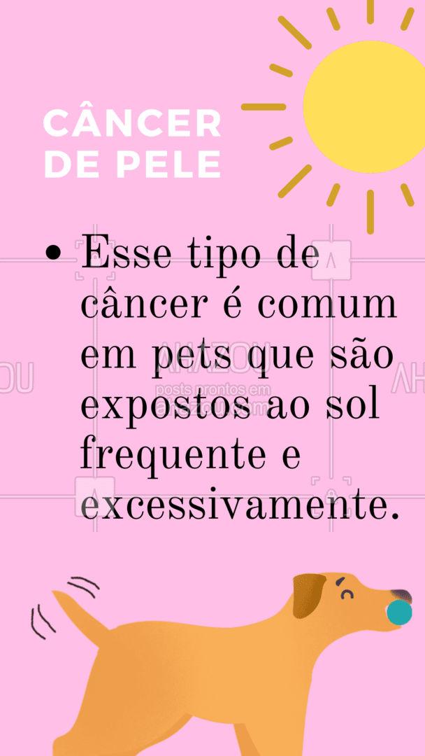 Você conhece os tipos de câncer mais comuns que podem atingir nossos bichinhos de estimação? ARRASTA PARA O LADO e confira quais são eles.   #AhazouPet #CarrosselAzh #Pets #AnimaisdeEstimação #Veterinario #VetPet #OncologiaVeterinária #CânceremPets #Cuidados #Dicas