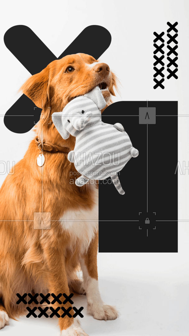Estamos preparados para atender seu pet da melhor forma possível! Entre em contato e agende sua consulta ou exame.  #AhazouPet  #medicinaveterinaria #medvet #vetpet #veterinarian #veterinary