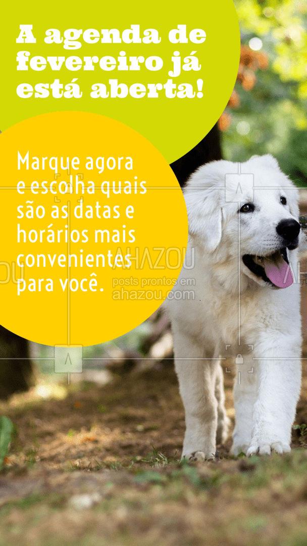 Tire um tempinho para olhar a agenda e garantir os melhores dias para seu pet!  #AhazouPet  #cats #dogs #dogsofinstagram #dogtraining #ilovepets #dogsitter #dogwalk