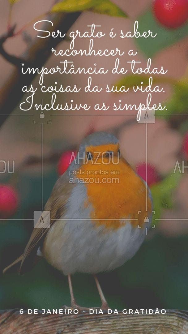 Comemore o dia da gratidão agradecendo por todas as coisas simples presentes em sua vida! ?? #ahazou #gratidao #frases #diadagratidao #vida #simples
