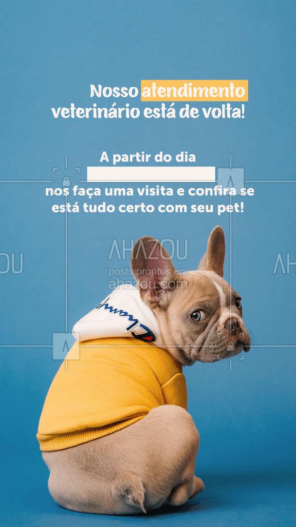 Agende a primeira consulta do ano e garanta o bem-estar do seu melhor amigo! ? #AhazouPet  #clinicaveterinaria #medvet #vetpet #veterinarian #clinicaveterinaria #veterinary #petvet