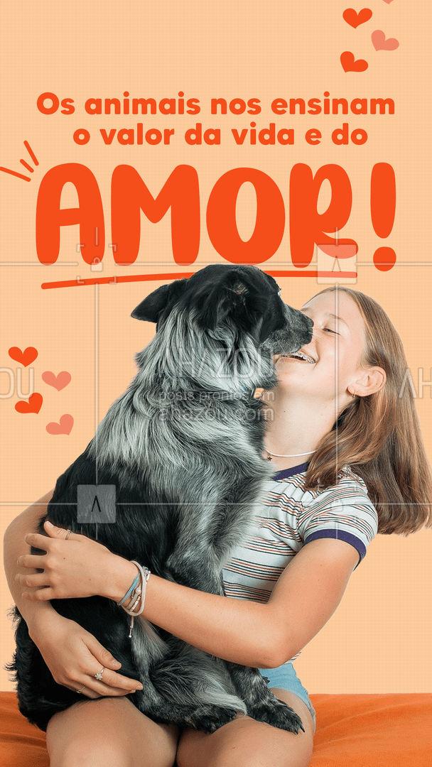Os animais são seres puros, que nos mostram o verdadeiro amor, sem pedir nada em troca. ???  #cats  #dogsofinstagram  #petlovers  #petsofinstagram  #ilovepets  #petoftheday  #dogs