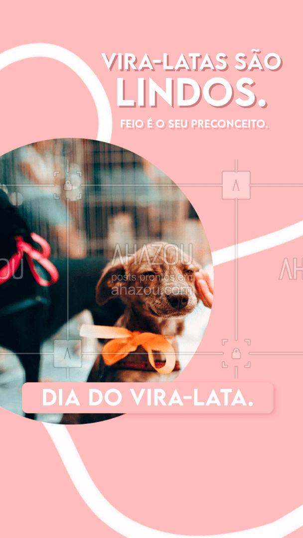 Onde tem amor, não tem espaço para o preconceito. Feliz Dia do Vira-lata!? #diadoviralata #viralata #amor #pet #AhazouPet #petlovers #ilovepets #AhazouPet