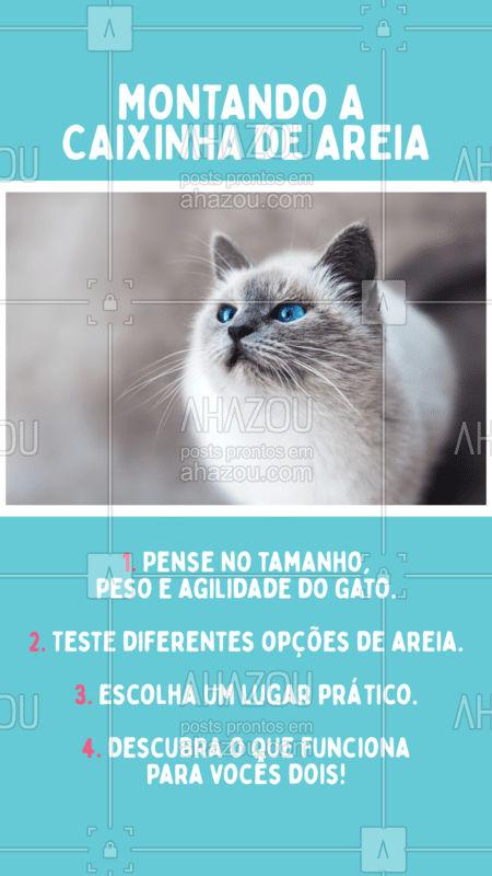 Quais dicas você daria para quem é tutor de primeira viagem? #petlover  #petcare  #veterinario  #ahazou  #gato  #cat   #ahazoupet