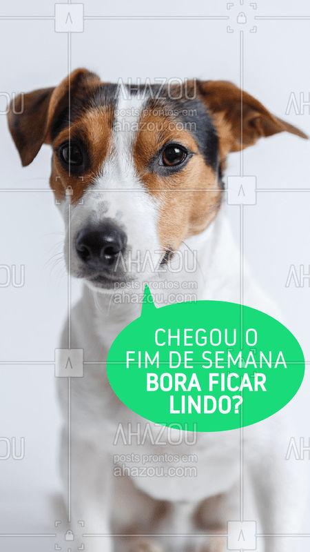 Mamãe, me leva pra ficar lindo? ?❤️ #pet #ahazoupet #Petshop #fimdesemana #sextafeira #cachorro
