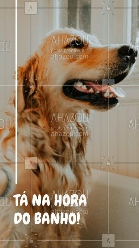 Agende já o banho do seu pet, ele merece ficar limpinho e cheiroso ? #cachorro #petshop #pet #ahazoupet #banhoetosa
