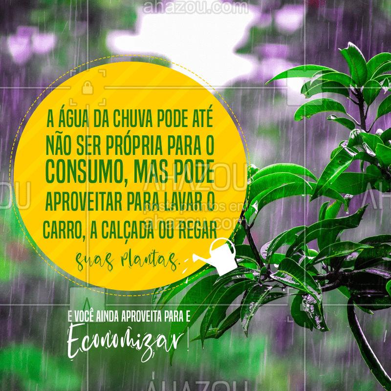 Água da chuva para economizar água, pode isso Arnaldo? Pode sim!   #EnconomiadeÁgua #Água #ÁguadaChuva #Encanamento #Encanador #Dicas